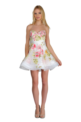 Sweet Rose Dress-0