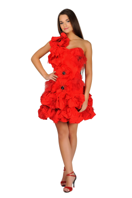 Red Poppy Dress-0