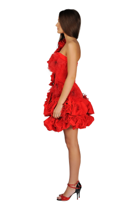 Red Poppy Dress-1