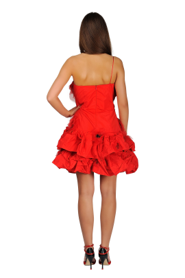 Red Poppy Dress-2
