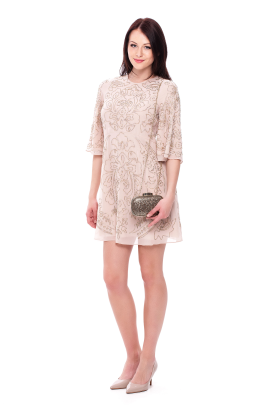 Embellished Chiffon Mini Dress-3