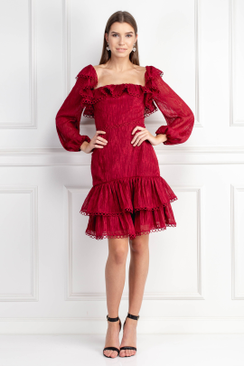 Burgundy Light Dress-0