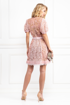 Pink Dress With Sequin Embroideries-2