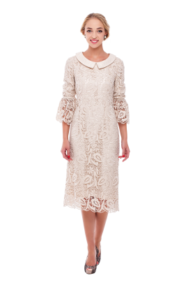 Ivory Lace Sleeved Dress -0