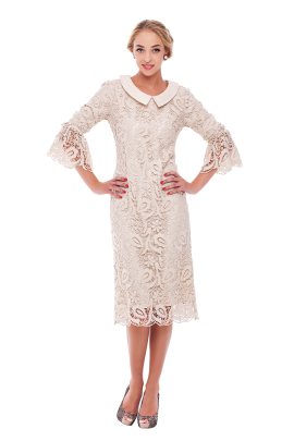 Ivory Lace Sleeved Dress -3