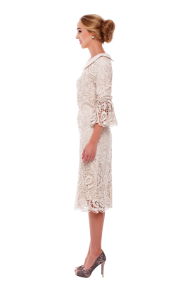Ivory Lace Sleeved Dress -1