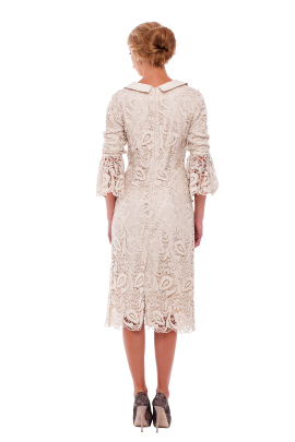 Ivory Lace Sleeved Dress -2