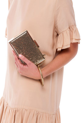 Gold Minaudiere With Bracelet-1