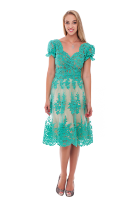 Vine Green Lace Dress -0