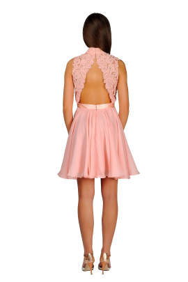 Blush Lady Dress-1
