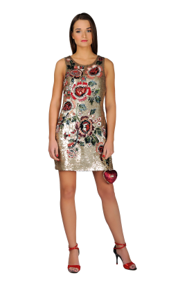 Sequined Mini Dress-0