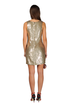 Sequined Mini Dress-2