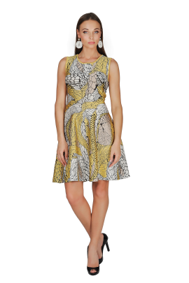 Printed Yellow Jaquard Dress-1