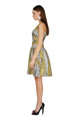 Printed Yellow Jaquard Dress-2