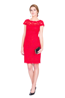 Scarlet Embroidery Dress -0