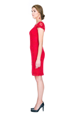 Scarlet Embroidery Dress-1
