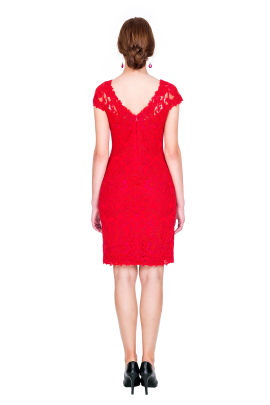 Scarlet Embroidery Dress -2