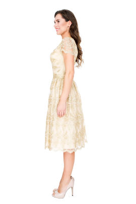 Golden Viola Dress -1