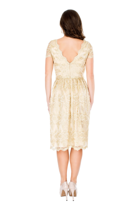 Golden Viola Dress -2