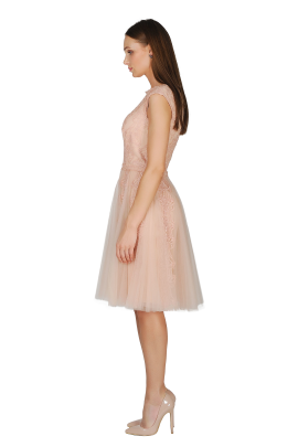 Pink Shadow Tulle Dress-1