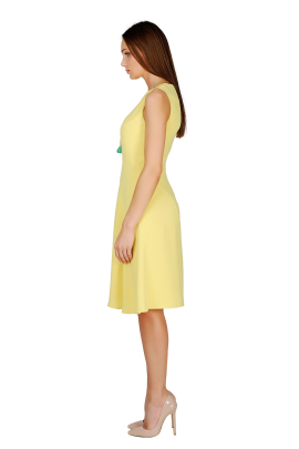 Light Yellow Crepe Dress-2